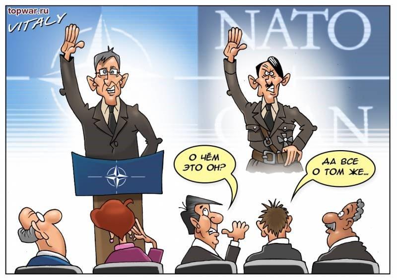 Image result for NATO CARTOON