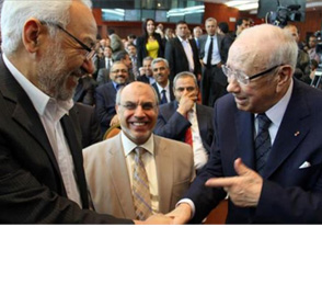 Separating The 'Political' From The 'Islam': Tunisia's Al-Ghannouchi And Reform Initiatives In The Egyptian Muslim Brotherhood