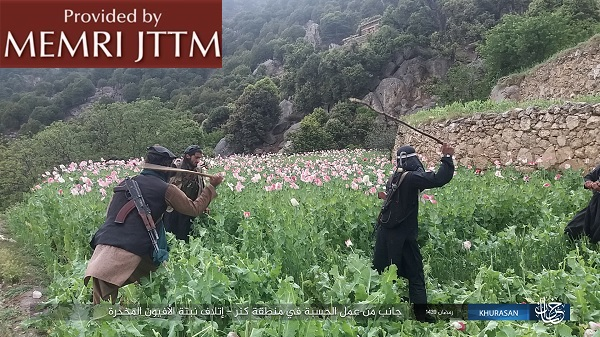 ISIS Religious Police In Afghanistan Destroy Poppy Fields, Demolish Graves, And Burn Expired Goods