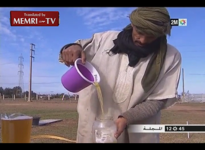 camel urine for cancer