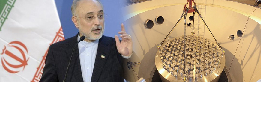 Head Of Iran's Atomic Energy Organization: Only External Pipelines Of Arak Reactor Were Filled With Cement, Its Core Was Not; Within Five Days, We Can Begin Enriching Uranium To 20%