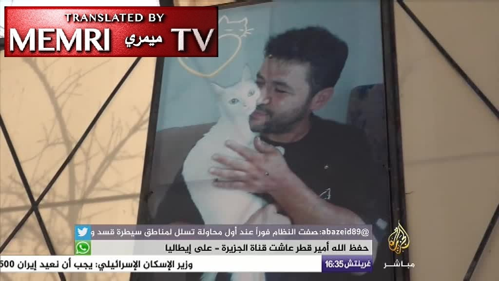 The Aleppo Cat Man: Ambulance Driver Mohammad Alaa Aljaleel Rebuilds His Shelter for Cats after Fleeing Aleppo